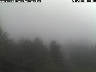 Baumgartner Bergblick